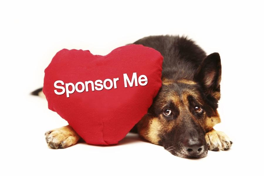 sponsorme_washhumane.typepad.com_copy